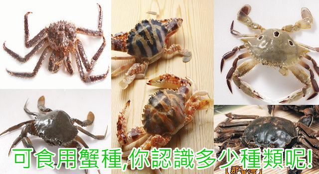 ptts_crabs7